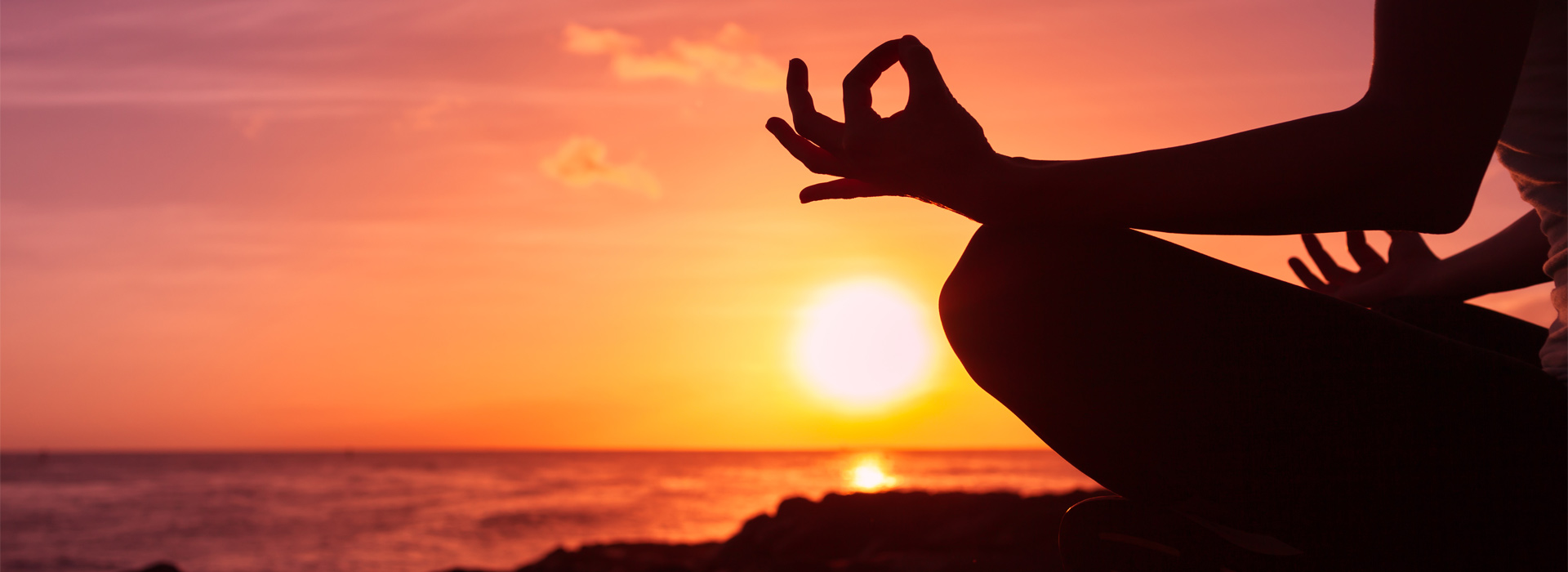 Loka Yoga Studio Yoga Retreat